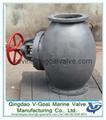 Marine Cast Iron Screw Down Steam Check Globe Valve JIS F7353 5K 2