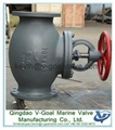 Marine Cast Iron Screw Down Steam Check Globe Valve JIS F7353 5K 3