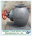 Marine Cast Iron Screw Down  Check Globe
