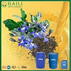 High GLA Bulk Plant Oil Borage Oil with