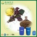 Plant Extract Bulk Omega-3 Perilla Seed