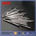 Shandong direct factory common wire nails 4