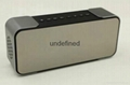 Portable Wireless Bluetooth Speaker PTH-305 Support FM Radio TF Time/Alarm Clock