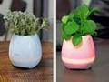 multi-color light smart music flower-pots bluetooth speaker 9