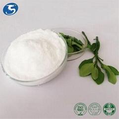 工厂直供食品级发酵L-茶氨酸