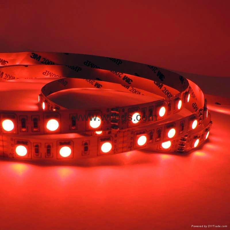 Strip Lights Vs Rope Lights : Super Bright 5050 LED Strip Lights, Tape, Rope Light BLUE 12V 5050 STRIP LIGHT - WF-5050-60leds ...
