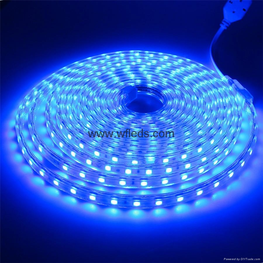 Lampes LED ruban led 220v 110v Bleu blanc flexible LED ...