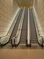 Escalator. Elevator and Passenger Conveyor 3