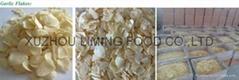 garlic flakes whitout roots