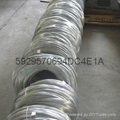 B19锌白铜线