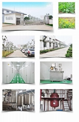 hunan greenland plant resource development co.,ltd
