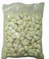 fresh garlic packaging machine