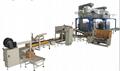 Cartoning Strapping Machine
