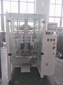 Ice Packaging Machine