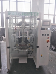Ice Packaging Machine
