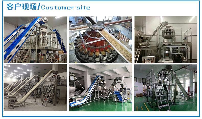 Multi row packing machine 4