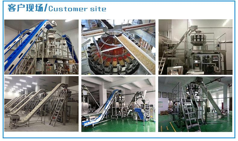 Packaging machine for canned slices 4