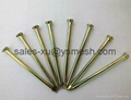 Stainless steel concrete nail 3