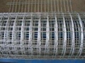 Good Quality Galvaized/PVC Coated Welded