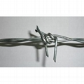 Stainless steel barbed wire with best
