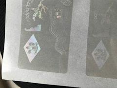 Delaware Hologram