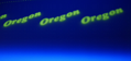 Oregon Laminate