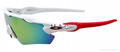 hight quality Oakley Sunglass Rayan glasses