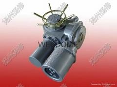 扬修电力开关电动执行器DZW20-18-A00-WK2可分体控制