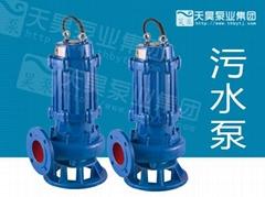 天昊100QW潜水排污泵