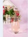 Designer brand perfume      Jadore perfume100ml 2