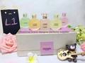 Designer perfume gift set  2