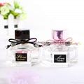 Hot slae folower perfume body spray