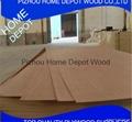 Natural Veneer Blockboard MDF Plywood 1220*2440*18mm 2