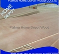 D/E Grade Birch Plywood From 2-18mm