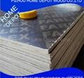 Furniture Grade Poplar Core Plywood