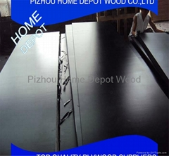 Construction Film Faced Plywood WBP and