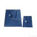 Custom high quality kraft paper bag 2