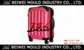 custom hard case rolling luggage mold