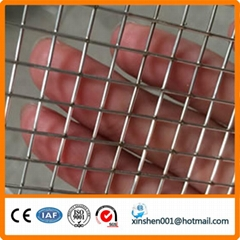 China supplier welded wire mesh