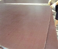 Wholesale products 18mm black film faced plywood