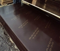 1220x2440x18mm Brown China film faced plywood