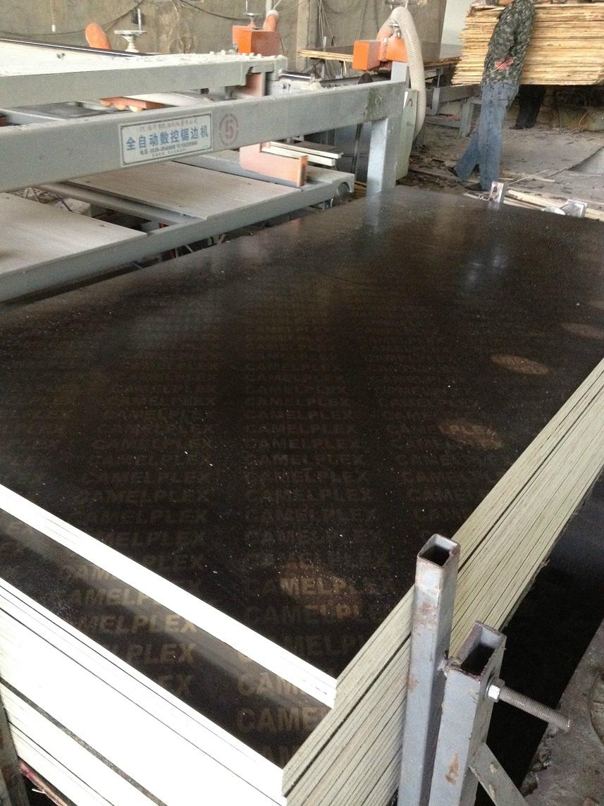 Cheap Factory Waterproof Film Faced Plywood for Construction