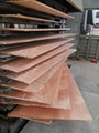 China Cheap and Best Selling Commercial Plywood to MID-East Market