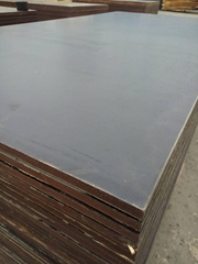 1250x2500mm black waterproof film faced plywood phenolic board