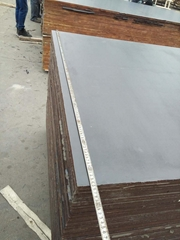 wbp glue poplar core film faced plywood from china manufacturer
