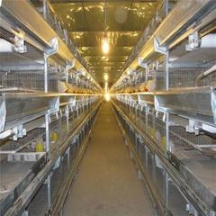 layer bird broiler chicken battery cage for chicken farm