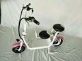 two wheel electric foldable scooter