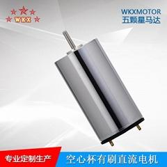 WKX厂家直销空心杯电机12/13/16系列减速马达可替代MAXON
