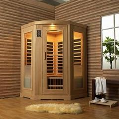 Solid wood steam sauna room