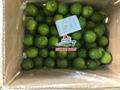 Fresh Seedless Lime/ Lemon 3